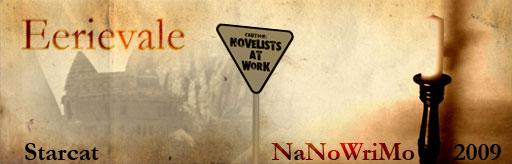 nanowrimo_02